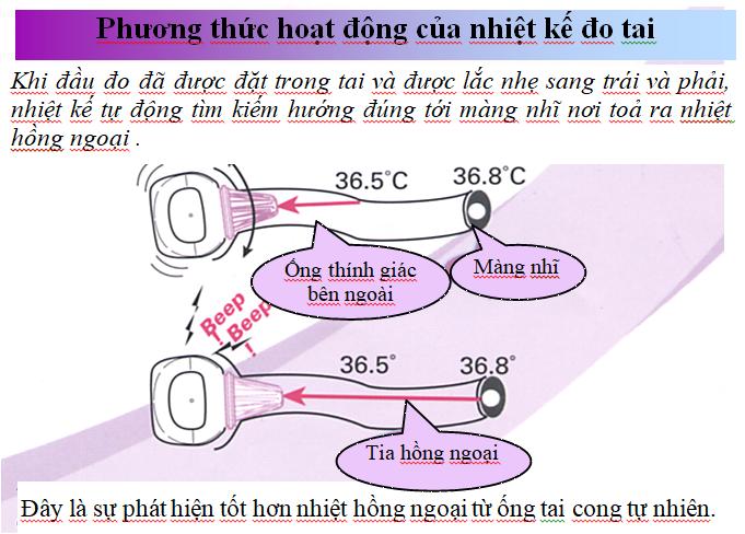 6. Các nguyên nhân gây ra kết quả đo thấp khi dùng nhiệt kế đo tai? 1