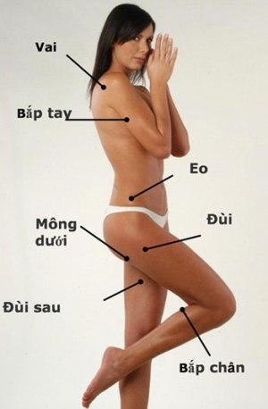 Giảm béo toàn thân bằng đông y 1