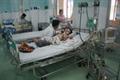 Tại TP.HCM đã có 50% phường, xã xuất hiện dịch sốt xuất huyết