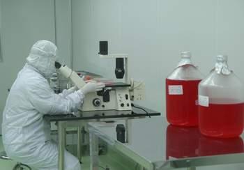 Phát hiện virus cúm A/H1N1 có biến thể mới 1