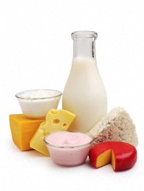 8. Các chế phẩm từ sữa 1