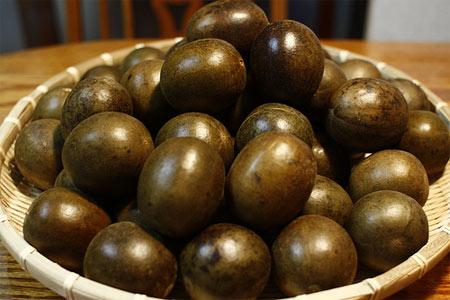 Tác dụng trị bệnh của quả La hán, cây Bung lai 1