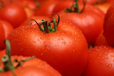 Cà chua 1