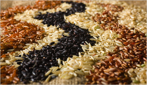 Ăn gạo lứt có giúp phòng ngừa bệnh tiểu đường? 1