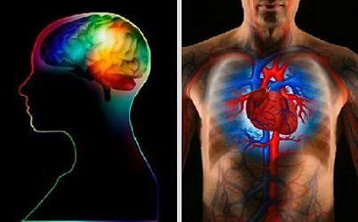 Phân biệt đột quỵ và cơn đau tim 1