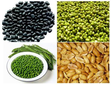 Các loại đậu 1