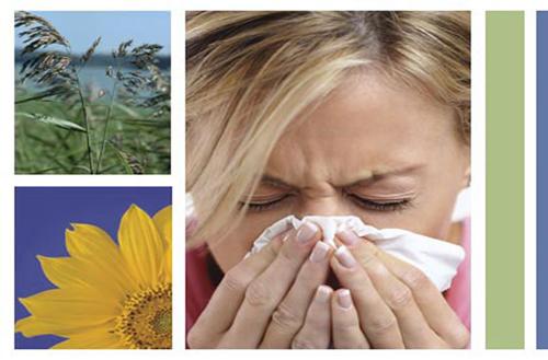 Vài điều cần biết về viêm mũi dị ứng