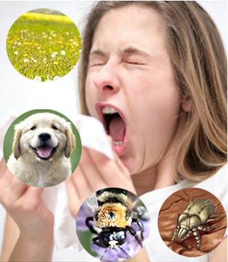 Nguyên nhân gây viêm mũi dị ứng: 1