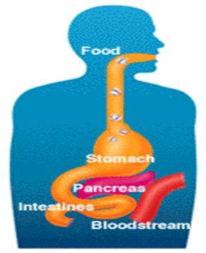 Hiểu hơn về bệnh tiểu đường ở trẻ em 1
