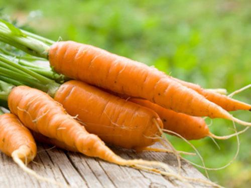 8. Cà rốt luộc 1