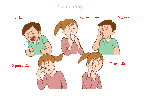 Các triệu chứng của viêm mũi dị ứng 1